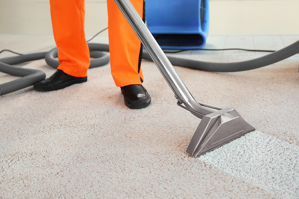 Carpet Cleaning Myths Dispelled – Reasons Why Cleaning is best For Your Carpets